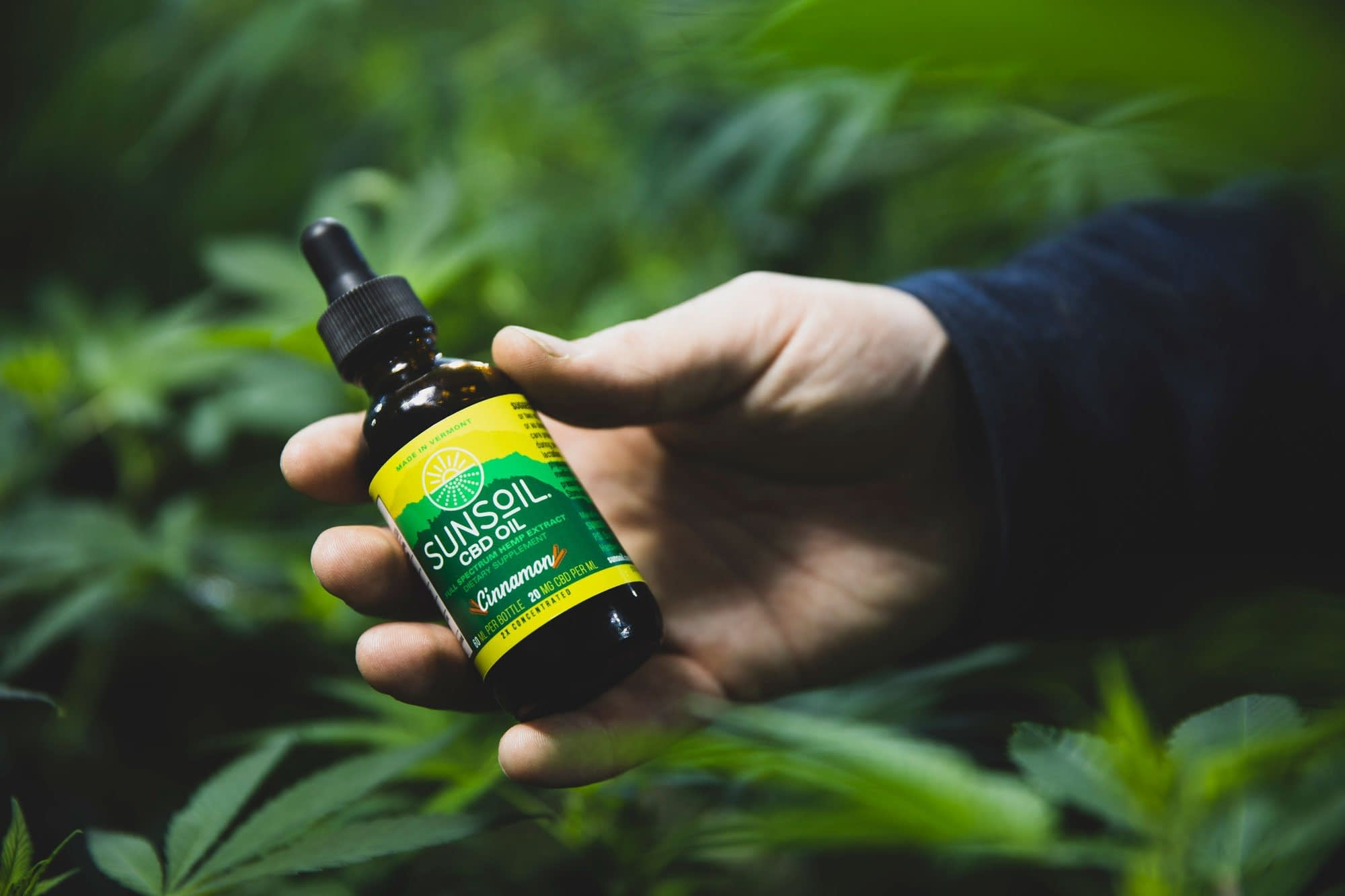 Social Media Marketing For The Cannabis/CBD Industry 2020